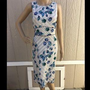 Banana 🍌Republic Dress. NWT. S10.